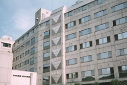 山野美容学校芸術短期大学